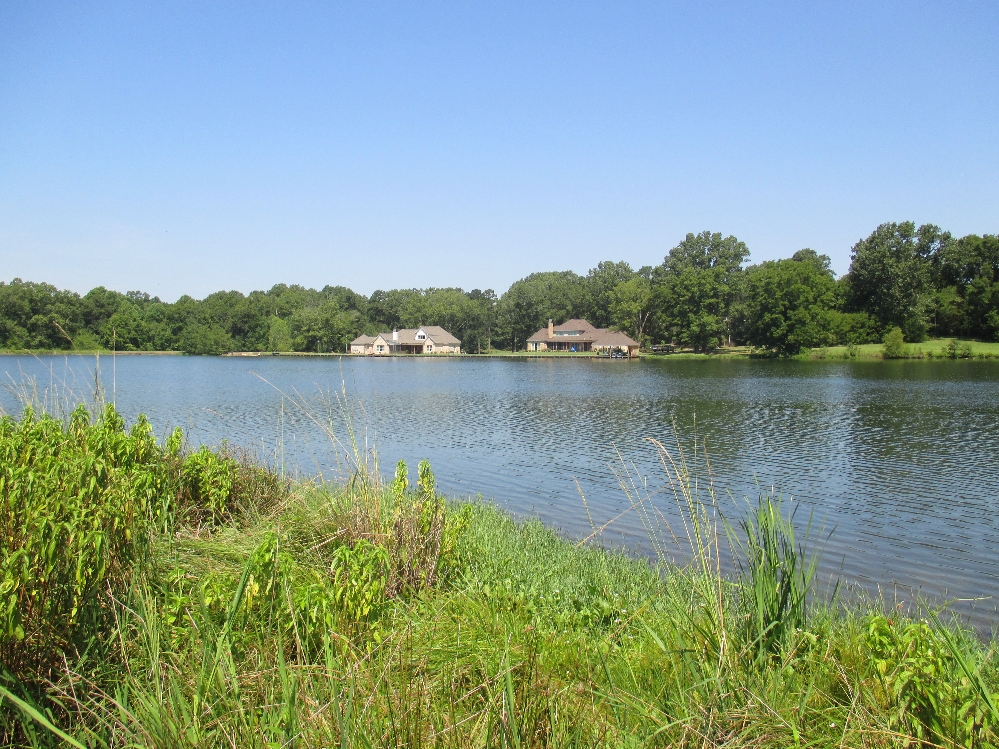 Queens Hill Lake, Hinds County, MS 022